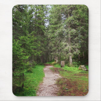 footpath on forest mouse pad