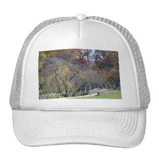 Footpath through arlington hat