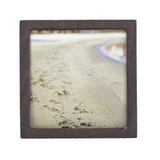 Footprint in coast. keepsake box