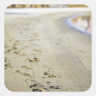 Footprint in coast. square sticker