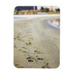 Footprint in coast. vinyl magnets