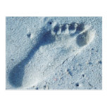 Footprint in the Sand Post Card