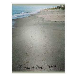 Footprints Along the Water's Edge Postcard