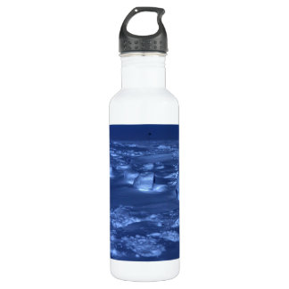 Footprints at the South Pole 24oz Water Bottle