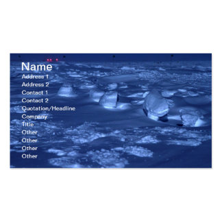 Footprints at the South Pole Business Card