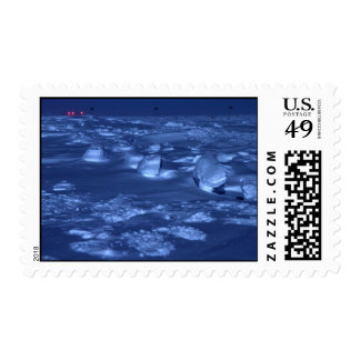 Footprints at the South Pole Postage Stamp