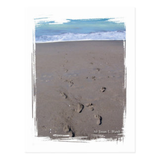 Footprints in beach sand blue ocean in back postcard