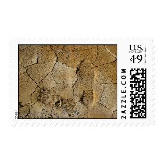 Footprints in mud postage stamp