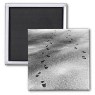 Footprints in Snow 2 Inch Square Magnet