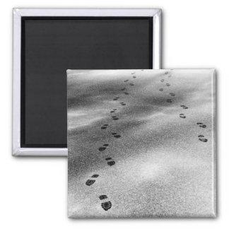 Footprints in Snow Fridge Magnet