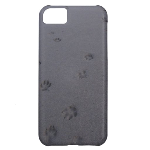 Footprints in the sand iPhone 5C case