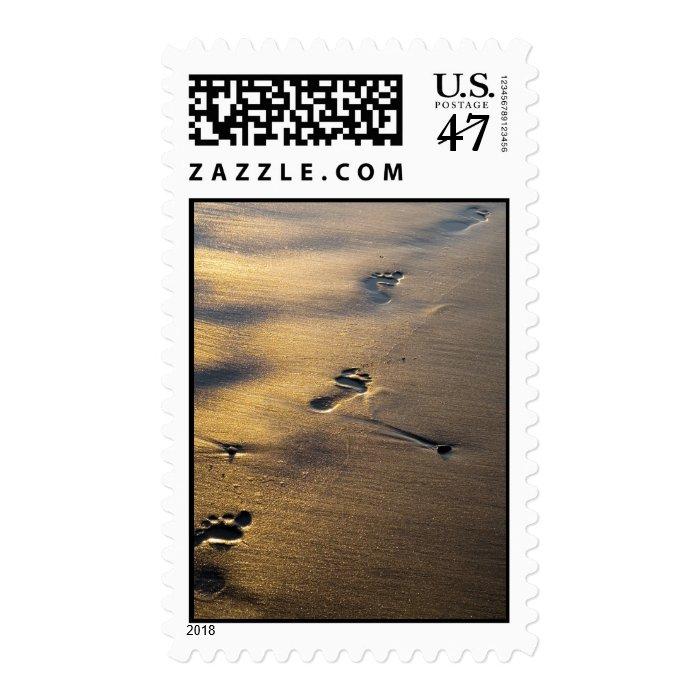 Footprints stamp