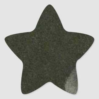 FOOTPRINTS STAR STICKER