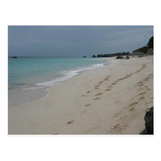 Footsteps in Bermuda Sand Postcard