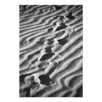 Footsteps on a Sandy Beach Photo