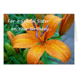 For a special sister on your birthday... card
