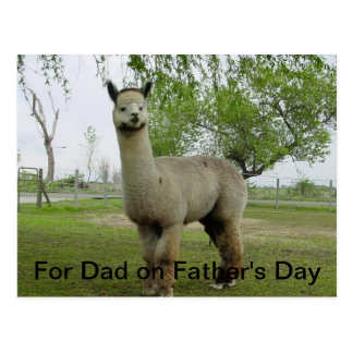 For Dad on Father's Day Postcards