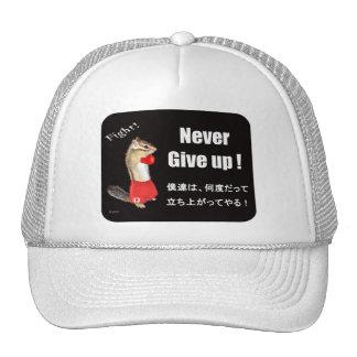 For For donationus use (fund-raising) Chipmunk pho Mesh Hats