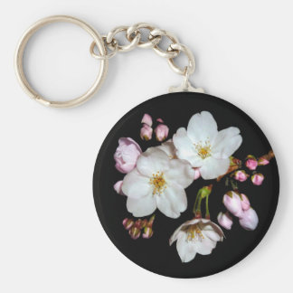 For fund-raising and Cherry blossoms, cherry tree Keychain