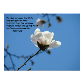 For God So Loved the World John 3:16 art prints Poster