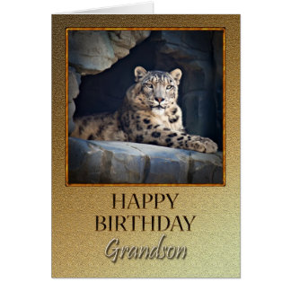 For Grandson a Birthday with a snow leopard Card