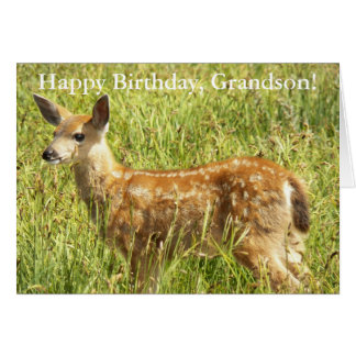 For Grandson Deer Fawn Photo Birthday Card
