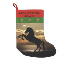 For Horses and Horse Lovers Small Christmas Stocking
