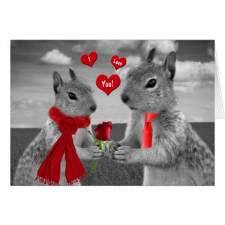 For Husband on Valentine s Day Funny Squirrel Card