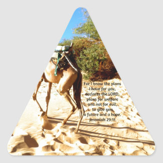 For I know the plans I have ....  Jeremiah 29:11 Triangle Sticker