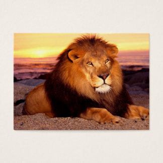 For lion lovers. business card