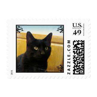 For Love of Cats Postage Stamps