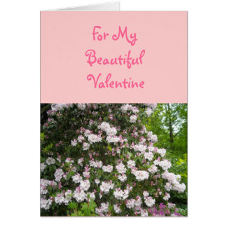 For My Beautiful Valentine Cards