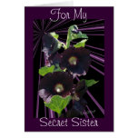 For My Secret Sister-customize any occasion Greeting Cards