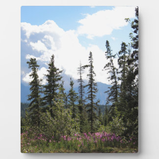 For Spacious Skies Alaskan Mountain Landscape Photo Plaques