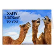 """FOR THE """"CHILD"""" THESE CAMEL SING """"HAPPY BIRTHDAY! CARD"""