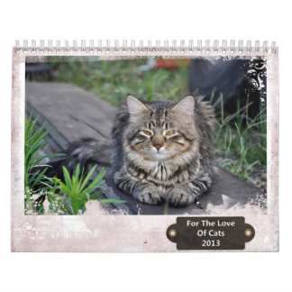For The Love Of Cats 2013 Calendar