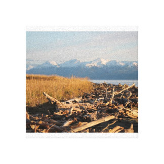 For the Love of Driftwood Canvas Print