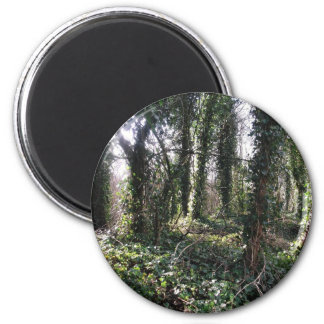 For the Love of Ivy. 2 Inch Round Magnet