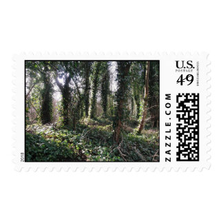 For the Love of Ivy Postage Stamp.