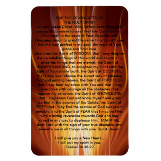 FOR THE SEVEN GIFTS OF THE HOLY SPIRIT RECTANGULAR PHOTO MAGNET