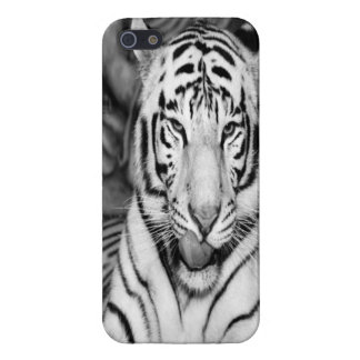 For the Tiger in you! iPhone SE/5/5s Cover