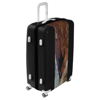For the Traveler Luggage