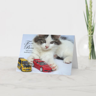 For Your Birthday (Cat) Cards