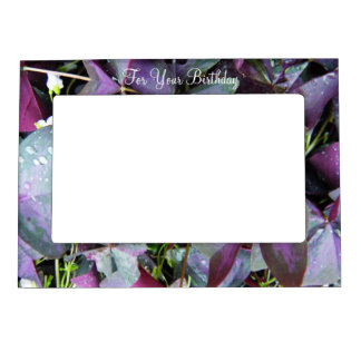 For Your Birthday-Purple Leaf Plant Magnetic Picture Frame