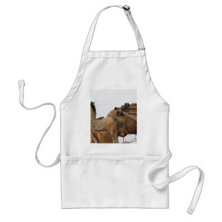 Foraging camel adult apron