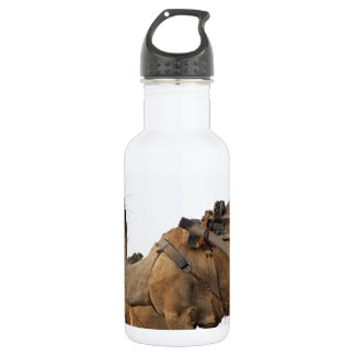 Foraging camel stainless steel water bottle