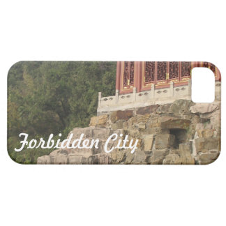Forbidden City iPhone 5 Cases