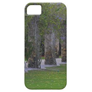 Forbidden Disclosure iPhone SE/5/5s Case