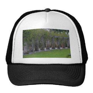 Forbidden Disclosure Trucker Hat