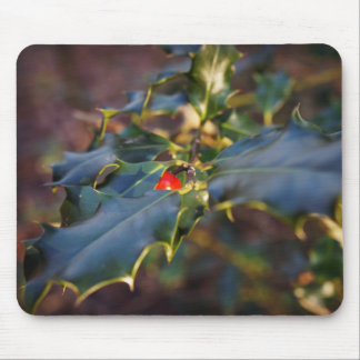 Forbidden Fruit… Mouse Pad